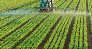 agroquimicos-campo-agrotoxicos