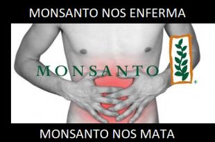 Directo-al-estomago-golpes-bajos-de-Monsanto-y-compania_large