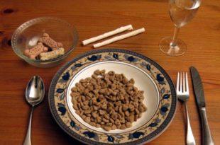 que-pasa-si-comemos-comida-para-perro-e1391445657222