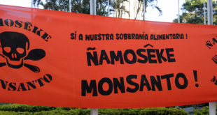 monsanto-banner-DSCN4377-copy