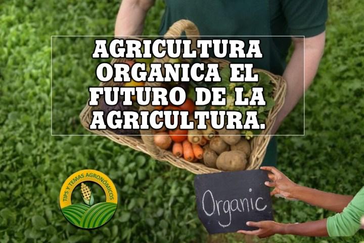 La-agricultura-del-futuro-