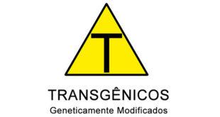 transgenicos-im