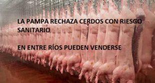 LOS PAMPEANOS PROTEGIDOS, BORDET EXPONE LOS ENTRERRIANOS AL PRRS