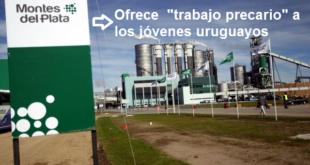 CINISMO AL PALO: MONTES DEL PLATA OFRECE TRABAJO ¡PRECARIO!